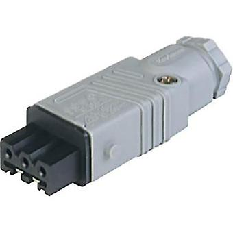 Mains connector Socket, straight Total number of pins: 3 + PE 16 A Grey Hirschmann STAK 3 N 1 pc(s)
