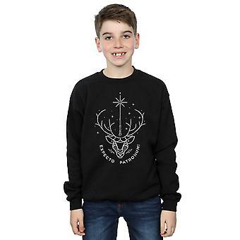 Harry Potter Boys Expecto Patronum Charm Sweatshirt