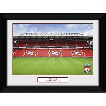 Liverpool FC Anfield 16 x 12 Picture