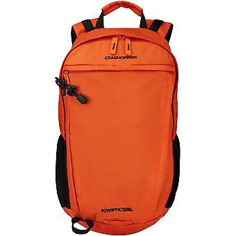 Craghoppers Mens Kiwi Pro 22 Litre Robust Daypack Hiking Bag