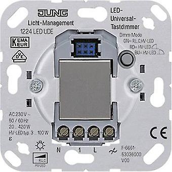 CD de Jung inserir Dimmer LS 990, AS 500, 500, projeto do LS, LS plus,