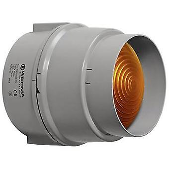 Light Werma Signaltechnik 890.300.00 Yellow Non-stop light signal 12 V AC, 12 Vdc, 24 V AC, 24 Vdc, 48 V AC, 48 Vdc, 110 V AC, 230 V AC