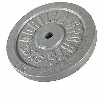 Gewicht schijf gegoten 25 Kg