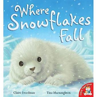 Där snöflingor falla