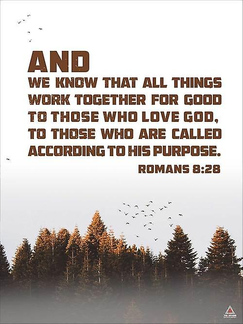 Romans 8:28 Poster All Things Work Together Bible Verse Quote Wall Art (18x24)
