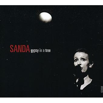 Sanda Weigl - Gypsy i en træ [CD] USA import