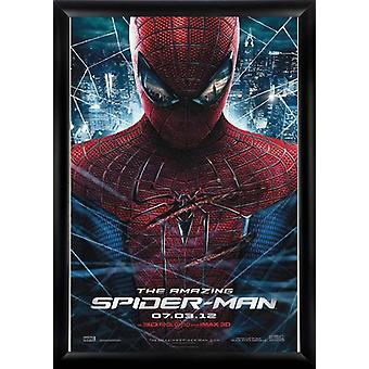 The Amazing Spider man - Signed Movie Poster