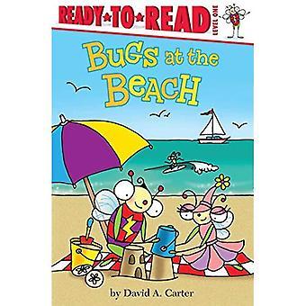 Fehler am Strand (bereit-zu-mal gelesen)