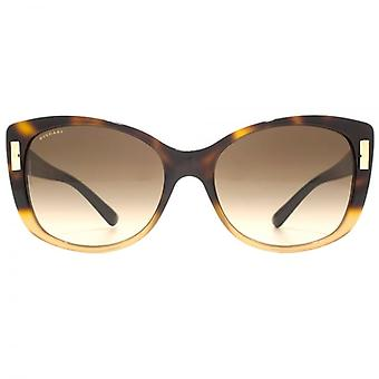 Bvlgari Cateye Sunglasses In Brown Havana Gradient