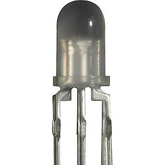Kingbright LF 59 LED indikator ljus (Multi färg) RGB cirkulär 5 mm 25 mcd, 30 mcd, 20 mcd 60 ° 20 mA 1,7 V, 2,2 V, 3 V