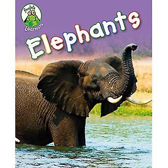 Froglets Learners: Elephants