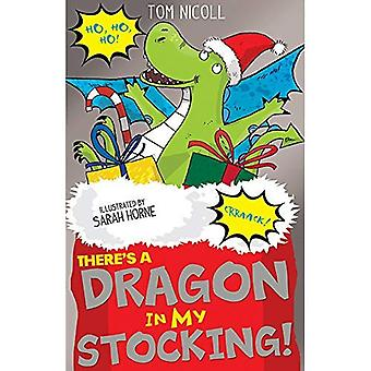 There's a Dragon in my Stocking! (There's a Dragon� in...)