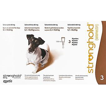 Stronghold Brown Dogs 11-22lbs (5-10kg) - 3 Pack