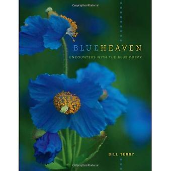 Blue Heaven: Encounters with the Blue Poppy