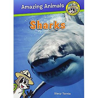 Sharks by Stacy Tornio - 9781630762889 Book