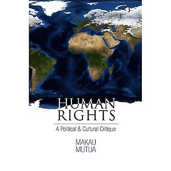 Human Rights: A Political and Cultural Critique (Pennsylvania Studies in Human Rights)