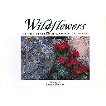 Wildflowers of the Plateau (Companion Press)