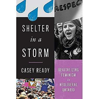 Shelter in a Storm: Revitalizing Feminism in Neoliberal Ontario