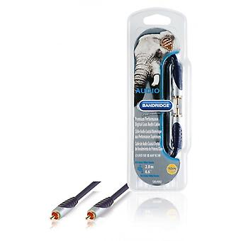 Bandridge-premium performance Digital coax audio cable