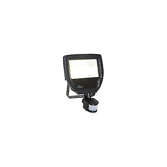 Ansell 20W Carina polycarbonaat LED Floodlight, PIR, Cool White