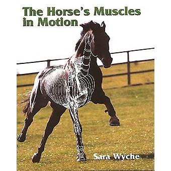 The Horse's Muscles in Motion by Sara Wyche - 9781861264565 Book