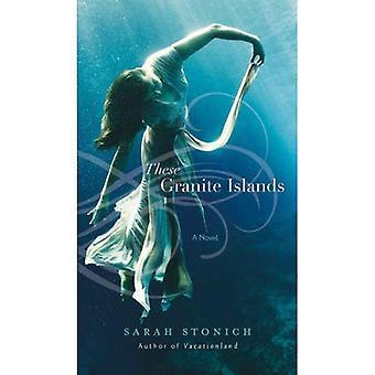 Dieser Granit-Inseln: Ein Roman