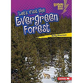 Let's Visit the Evergreen Forest (Lightning Bolt Books Biome Explorers)
