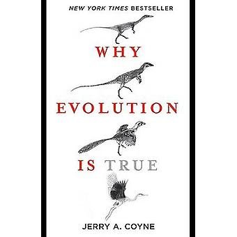 Why Evolution Is True by Jerry A Coyne - 9780143116646 Book