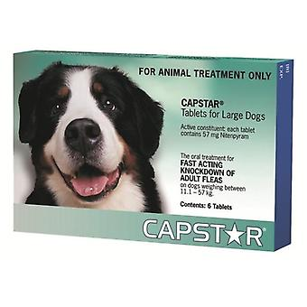 Capstar Large Dogs 11.1-57kg Tablets - 6 Pack
