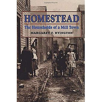 Homestead : The Households of a Milltown
