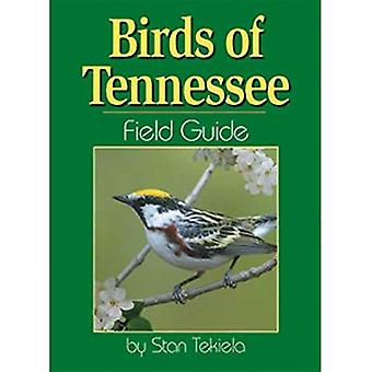 Birds of Tennessee Field Guide (Our Nature Field Guides)