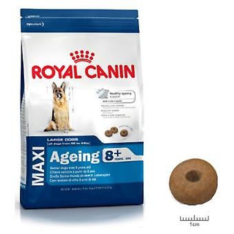 Royal Canin Maxi Ageing 8+ (Dogs , Dog Food , Dry Food)