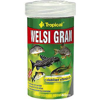 Tropical Grainy Welsi 100 Ml (Fish , Food , Warm Water)