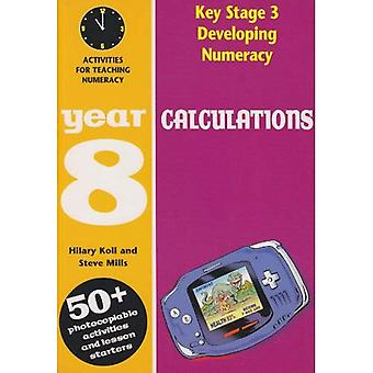 Developing Numeracy: Calculations: Year 8: Activities for the Daily Maths Lesson (Developings)