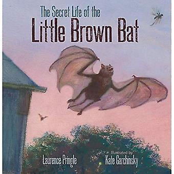 The Secret Life of the Little Brown Bat (The Secret Life)