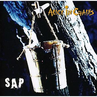 Alice in Chains - Sap [CD] USA import