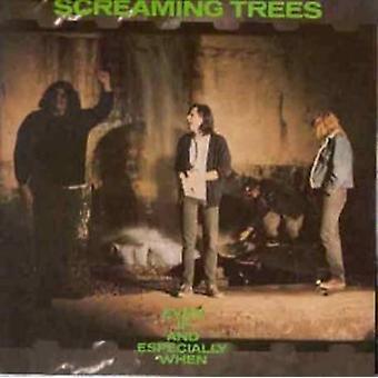 Skrigende træer - selvom & især når [Vinyl] USA importerer