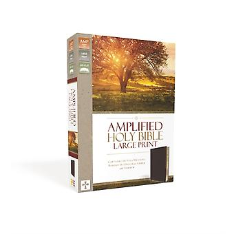 AMPLIFIED THINLINE BIBLE LP BN BND BRG (Bonded Leather) by Zondervan Publishing