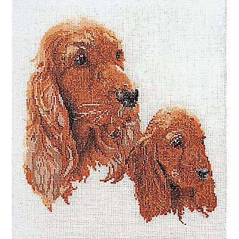 Spaniels On Aida Counted Cross Stitch Kit-11.75