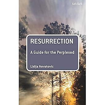 Resurrection: A Guide for the Perplexed (Guides for the Perplexed)