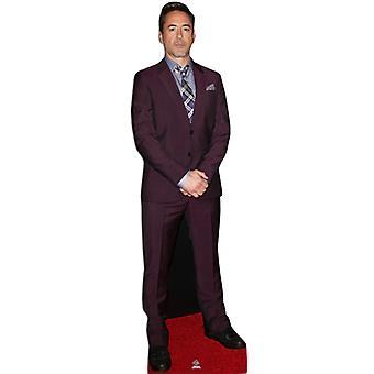 Robert Downey Jr.  Lifesize Cardboard Cutout / Standee / Stand Up
