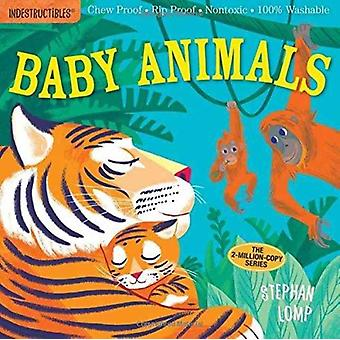 Baby Animals by Pixton Amy Lomp Stephen