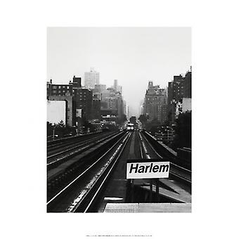 Next Stop Harlem Poster Print by Ellen Fisch (14 x 18)