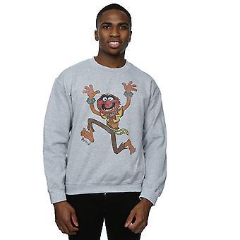 Disney Men's The Muppets Classic Animal Sweatshirt