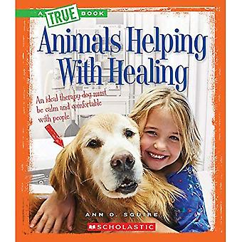 Djur som hjälper till med Healing (sanna böcker)