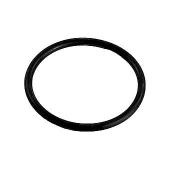 Pentair 154492 O-Ring 3/16