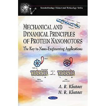 Mechanical and Dynamical Principles of Protein Nanomotors