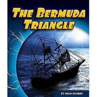 Il triangolo delle Bermuda (misteri irrisolti)