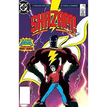 Shazam A New Beginning 30th Anniversary Deluxe Edition by Roy Thomas