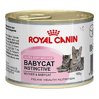 Royal Canin Babycat Instinctive 10 (Cats , Cat Food , Wet Food)